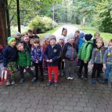 Grupa 4 –  wycieczka do Zagrody Żubrów w Pszczynie